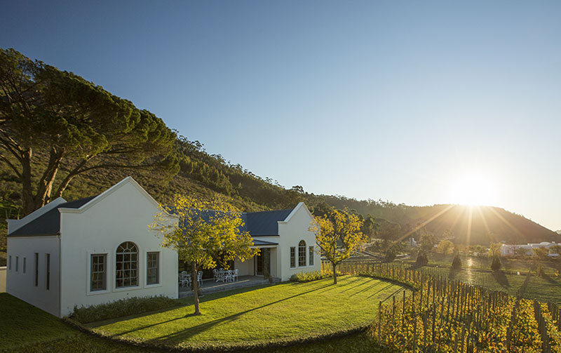 winelands-sml-3