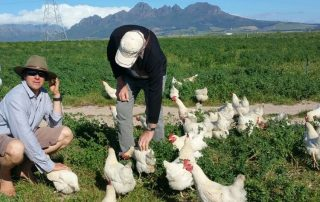 Farmer Angus