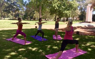 Yoga and wine at Spier.