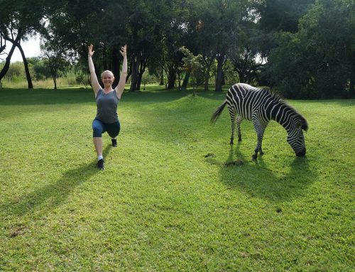 7 DAY YOGA SAFARI – MUNGA ECOLODGE, ZAMBIA.